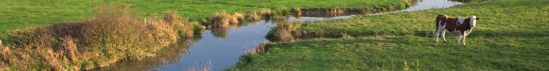 banniere-ruisseau-amedee-de-almeida-43