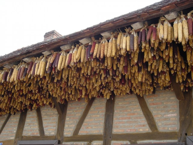 History of the Burgundian Bresse