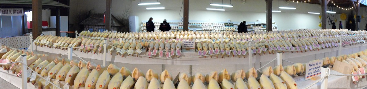 Glorieuses de Louhans-concours-volailles-de-bresse-poulet-poularde-chapon-dinde-Bresse-bourguignonne