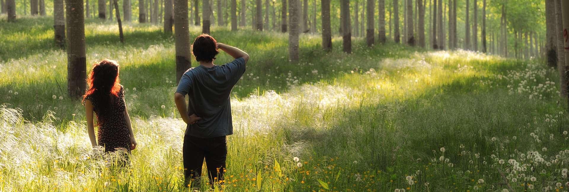Forêt en Bresse Bourguignonne - Amédée De Almeida
