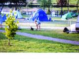 Camping de l'Etang Titard
