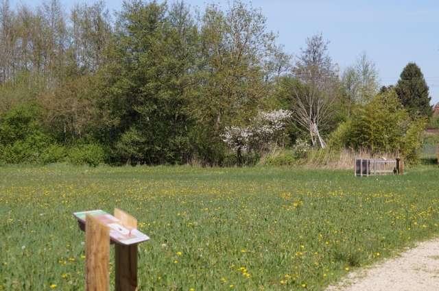 Balades Vertes - Sentier des Mares - Office de Tourisme du Pays de la Bresse Bourguignonne