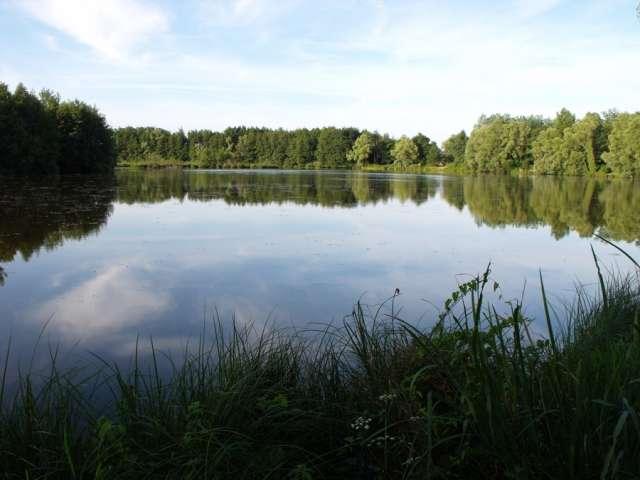 Etang Fouget La Truchère-Ratenelle - Office de Tourisme du Pays de la Bresse Bourguignonne