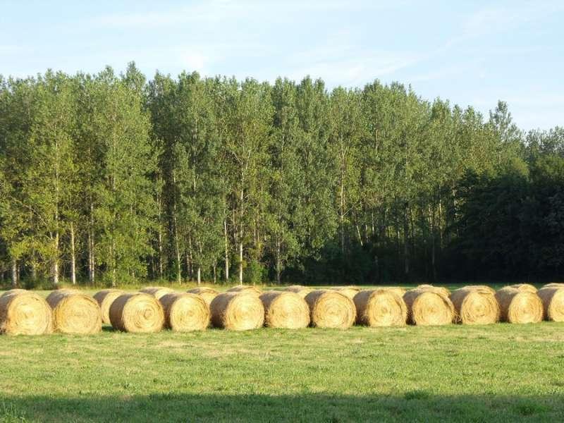 Bottes de paille - Office de Tourisme du Pays de la Bresse Bourguignonne