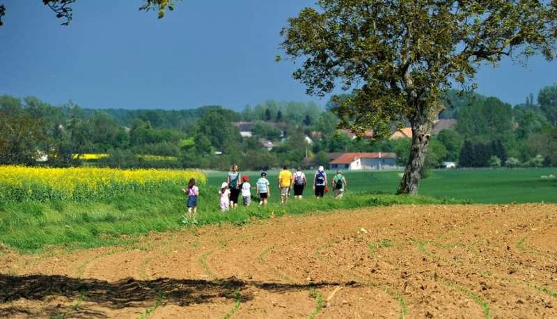 Chemin de randonnées - Amédée De Almeida