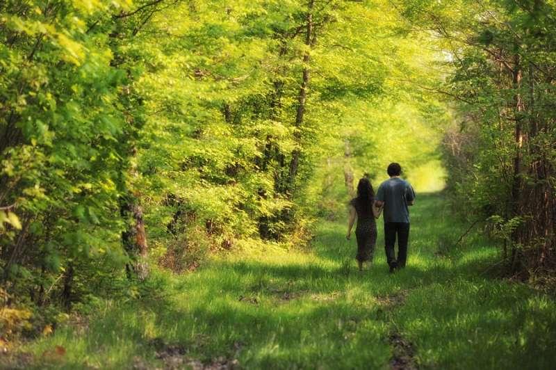 Forêt - Amédée De Almeida