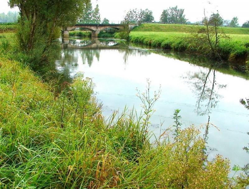 riviere-dommartin-les-cuiseaux-179874