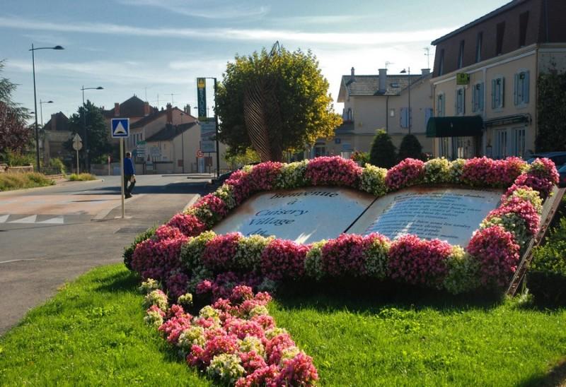 village-du-livre-fiche-cuisery-amedee-de-almeida-209084